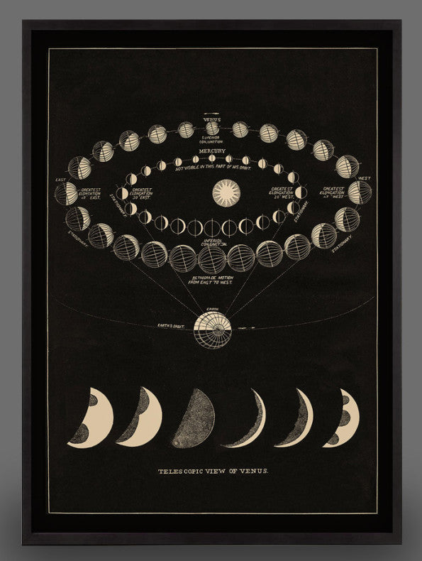 Venus Transit Moon Phase Print  - 2 sizes