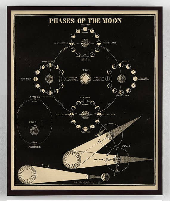 "Capricorn Press - Phases of The Moon Print 16"" x 20"""