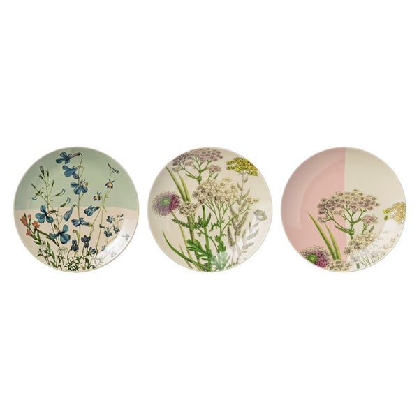 Botanic Plates - Set of 3