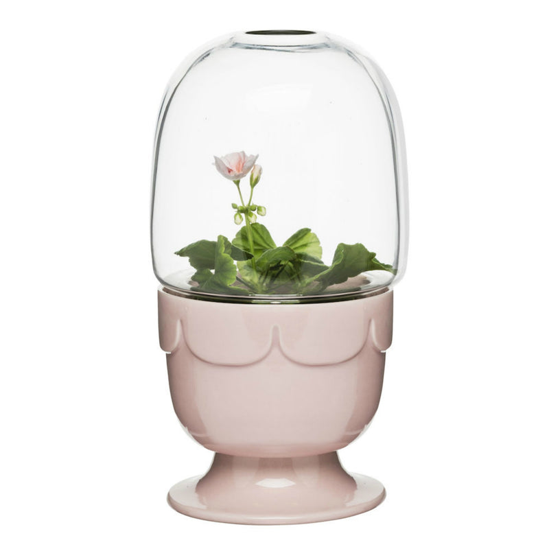 Planter on Stand with Glass Dome, Pink