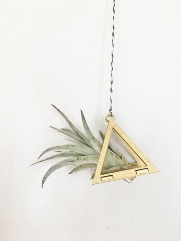 Triangle Air Plant Ornament