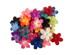 50pcs. Mix Hibiscus Flower Petals-2.5