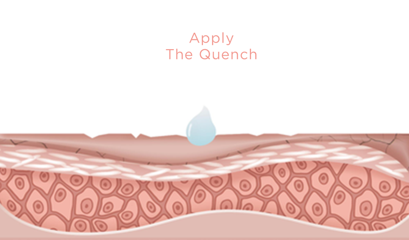 Apply The Quench to Repair Skin's Lipid Barrier
