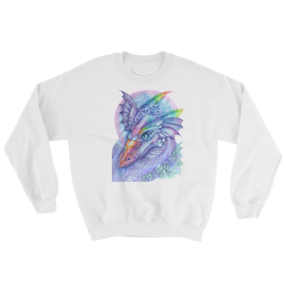 q Dragon, Sweatshirt