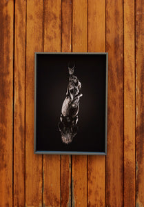 Under-Horse Prints Medium 42 x 30 cm
