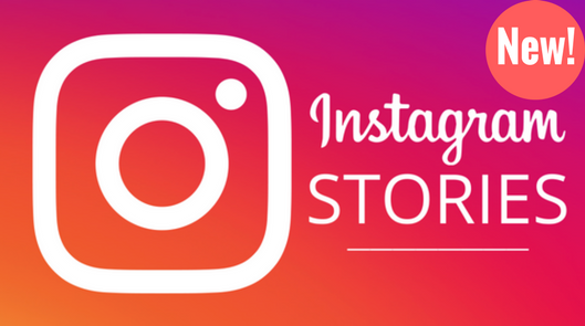 We WILL Create A Professional PROVEN 15 Second Instagram Video Story For You