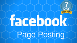 We Will Create Professional Facebook Posts on Your Behalf and Post For You - Try us FREE