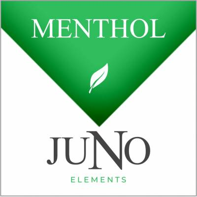 Juno - Menthol - Four Pack Pods - Cloud City Vapes NC