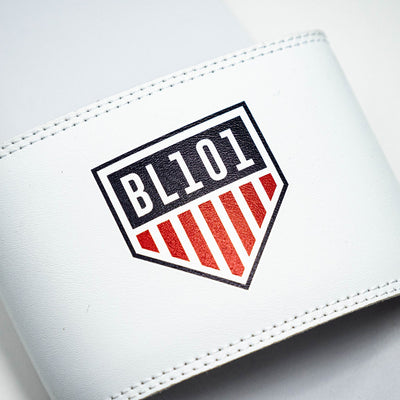 Close up of BL101 home plate USA logo on top of slides