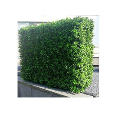 ResiGrass ResiLeaf Buxus Artificial Green Hedge