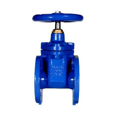 Hidroconta Isolation Gate Valve