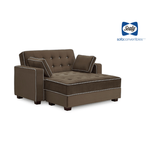Belize Loveseat & Ottoman with Storage in Brown by Sealy