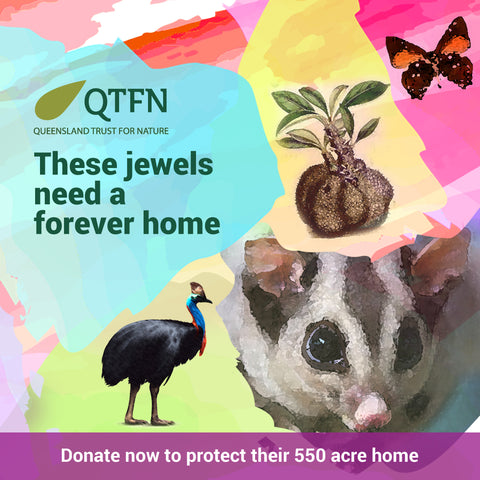 Protect Ant Plant Reserve Forever