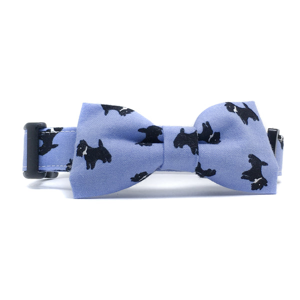 Blue Scottish Terrier Dog Collar and Bow Tie Set