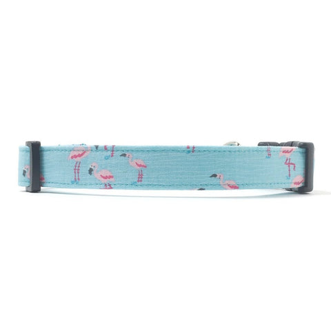 Turquoise blue dog collar with tiny pink flamingos