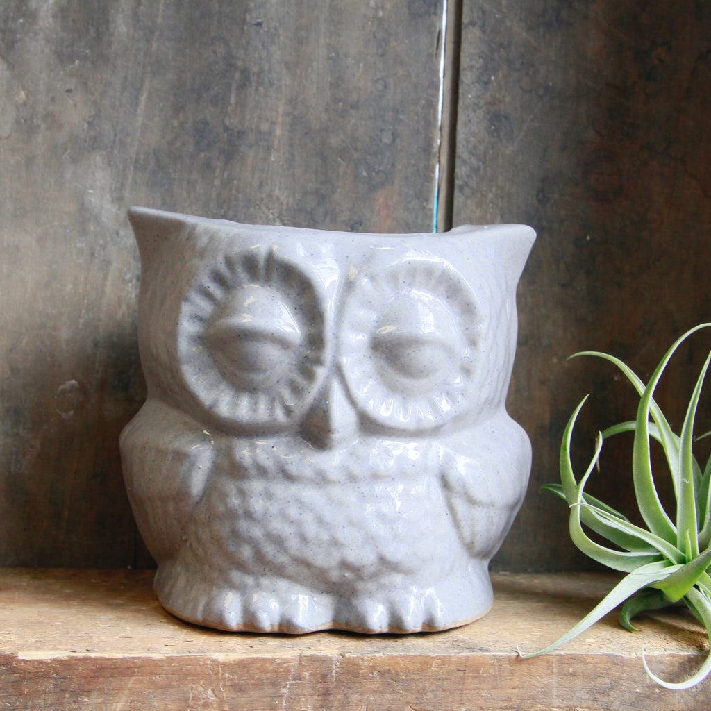 Claylicious - Ceramic Owl Planter