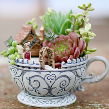 The Willie Wags Workshop: June 27th 4PM Succulent Fairy Garden Party