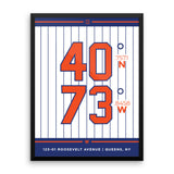 New York Mets <br>Framed Poster