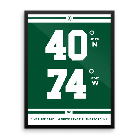 New York Jets <br>Framed Poster