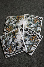 Art by Lee Murphy (Pandanus Awakening) - Set of 4