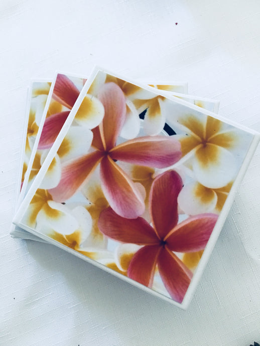 Photography by Nardia Grant (Frangipani obsession) - Set of 4