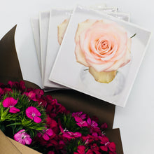 Photography by Jules Wood (Pink Rose)- Set of 4