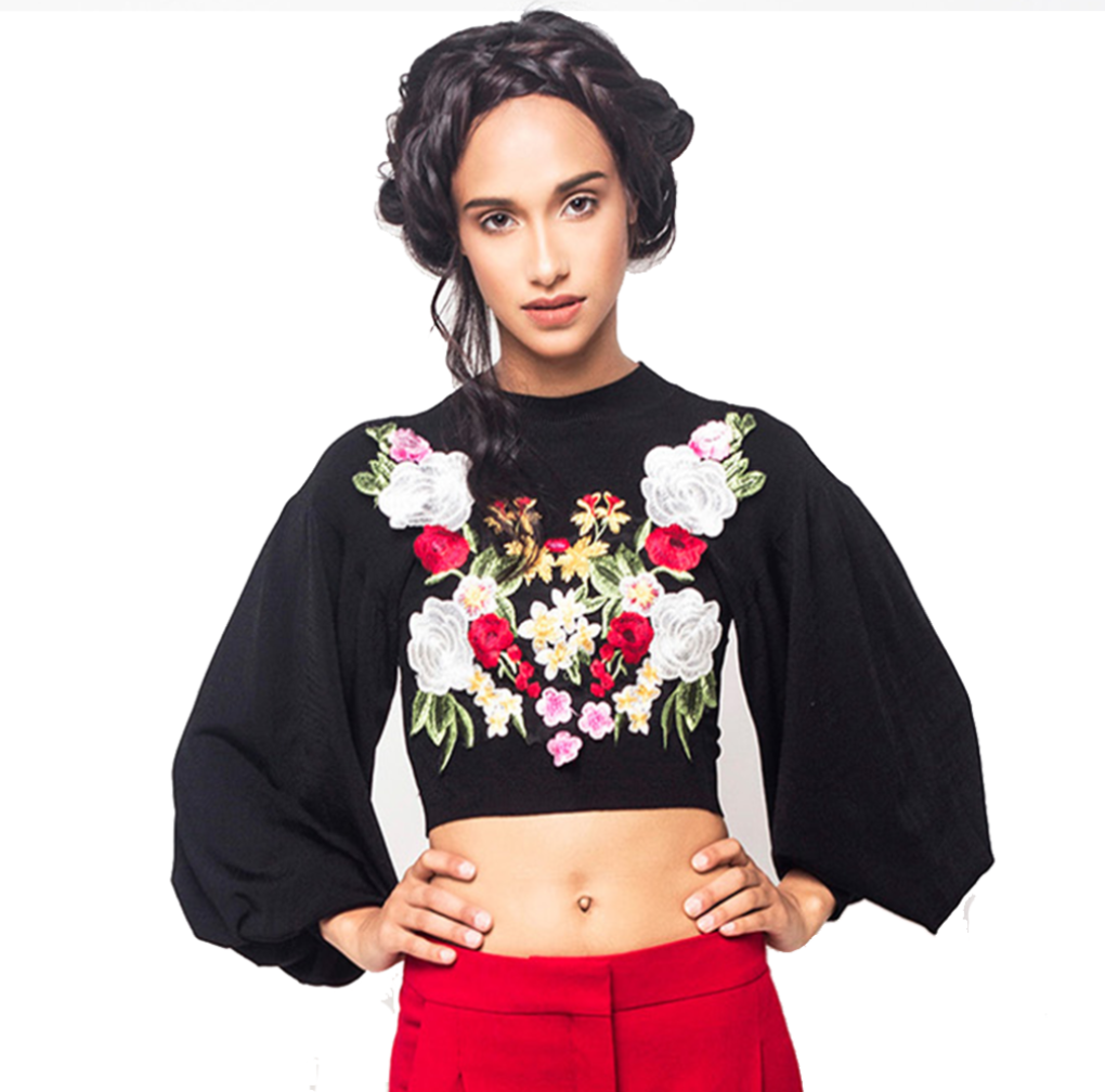 Balloon Sleeve Crop Top with Embroidery
