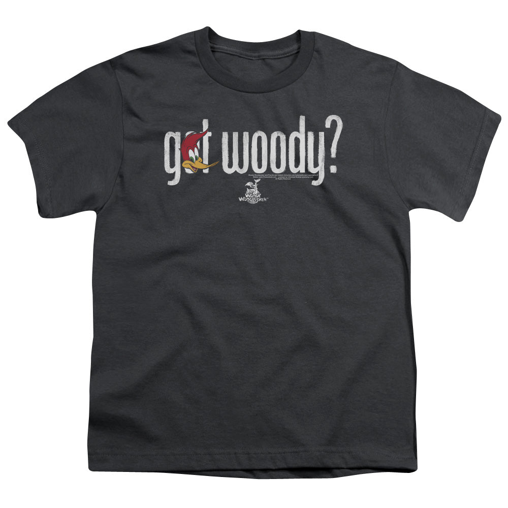 Woody Woodpecker - Got Woody Short Sleeve Youth 18/1