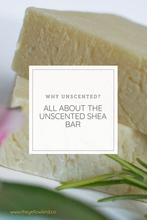 Why Unscented? All About Our Shea Butter Soap.