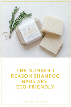 the-yellow-bird-eco-friendly-shampoo-blog