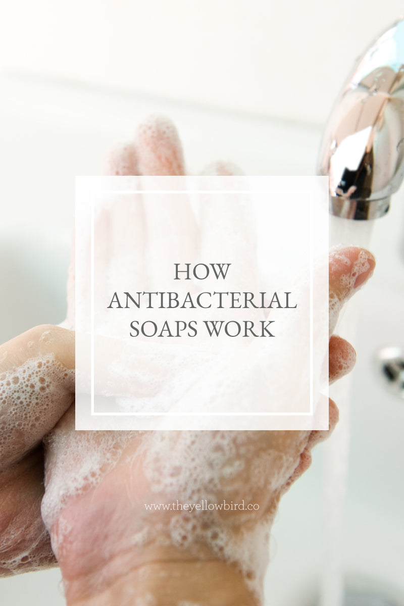 How Antibacterial Soaps Work