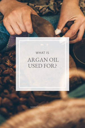 What is Argan Oil Used For?