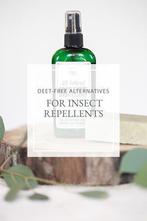 DEET-Free Alternatives for Insect Repellents