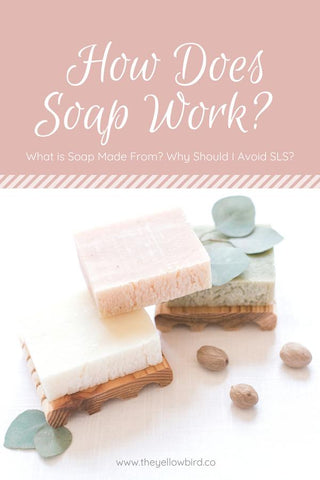 HOW DOES SOAP WORK? WHAT IS SOAP MADE FROM? WHY SHOULD I AVOID SLS?