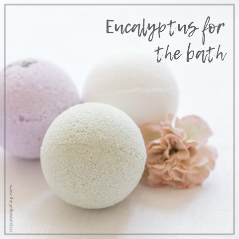 Eucalyptus oil benefits for bath