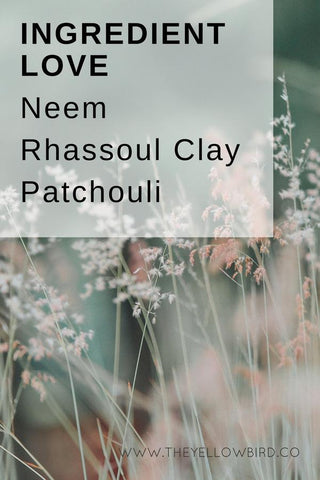 INGREDIENT LOVE: FEATURING NEEM, RHASSOUL CLAY AND PATCHOULI