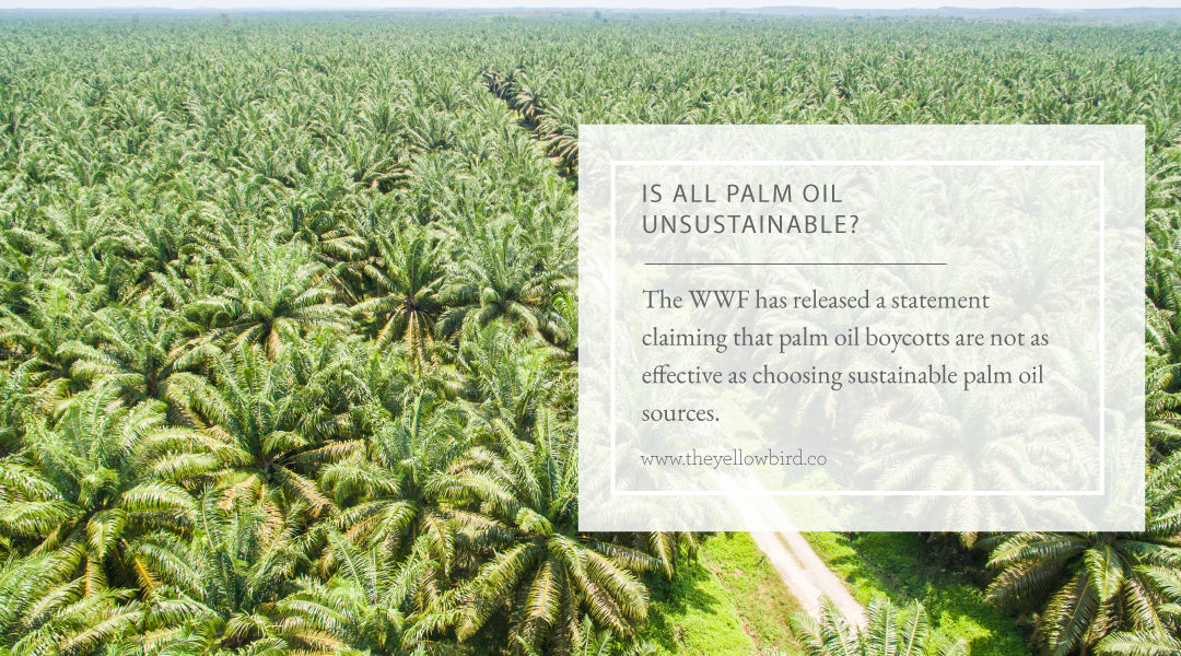 Is all Palm Oil Unsustainable