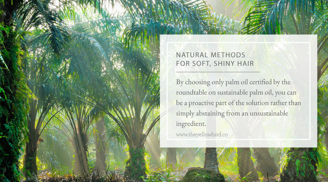 Natural Methods for Soft Shiny Hair