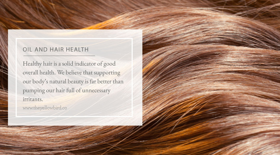 Oil and Hair Health
