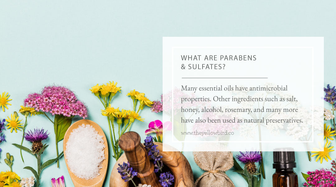 What are Parabens and Sulfates