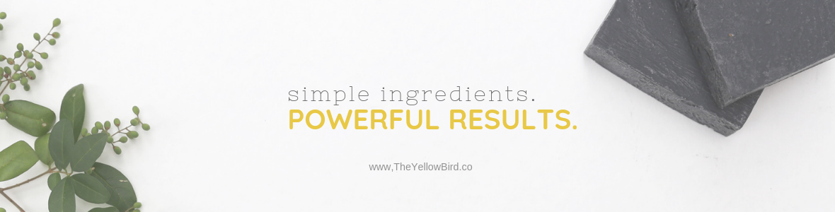 simple ingredients powerful results wholesale skincare