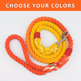 "Ombre Custom Dual Color 1/2"" Rope Leash (4ft)"