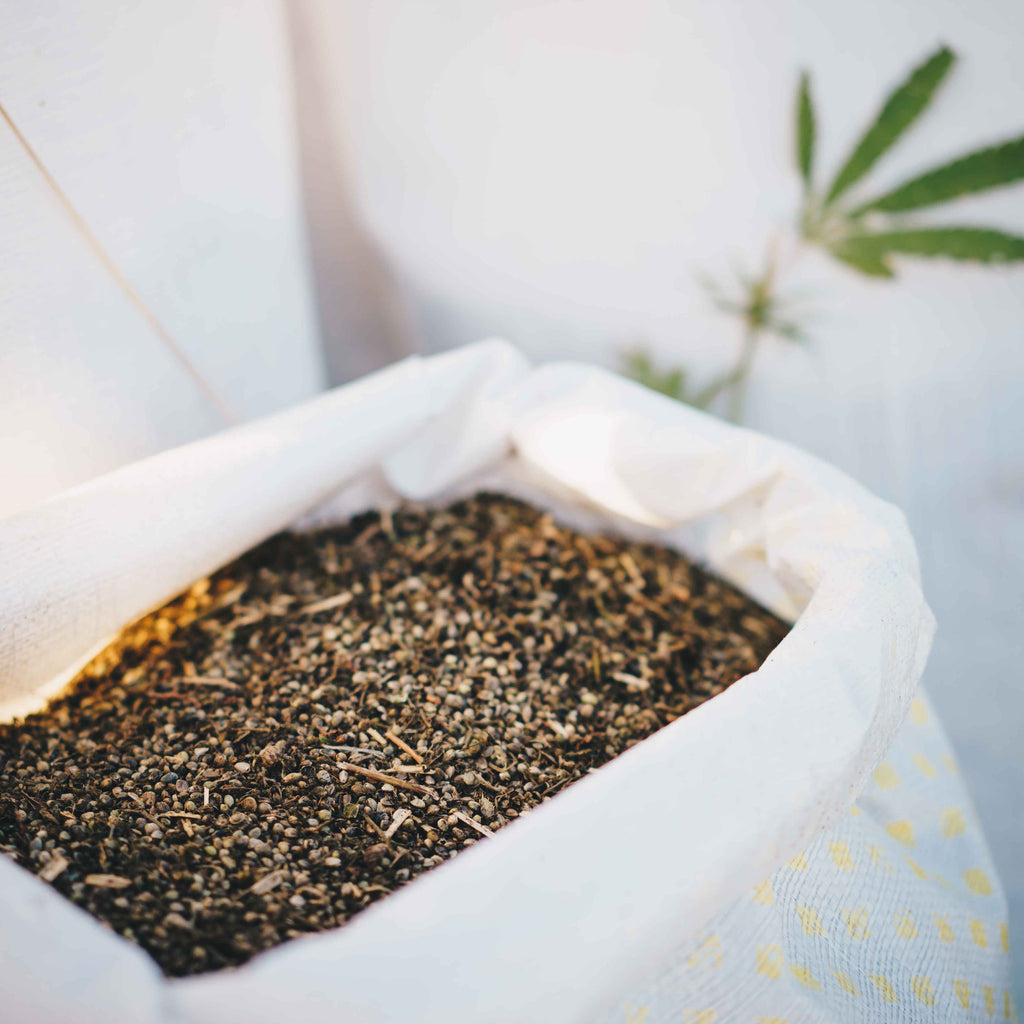 viable hemp seed New Zealand