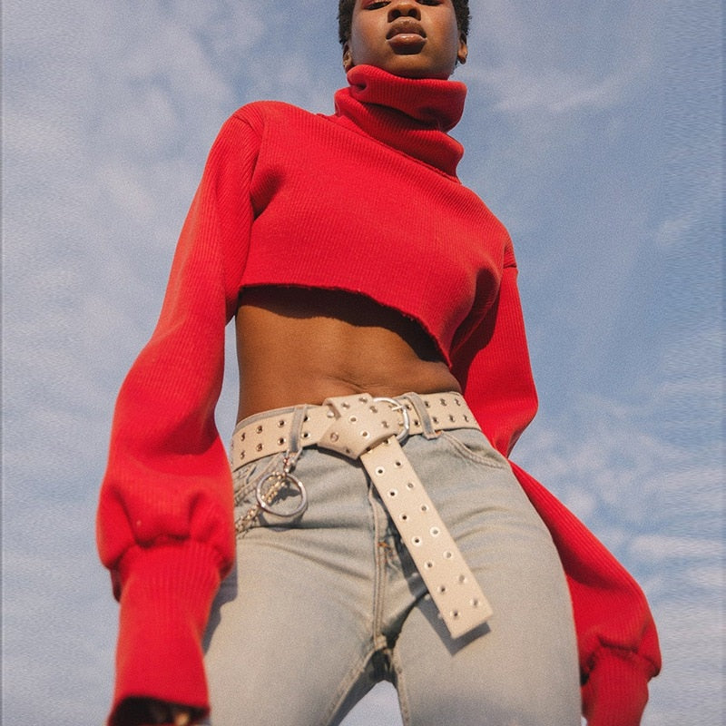 Reena Crop Turtleneck Sweater
