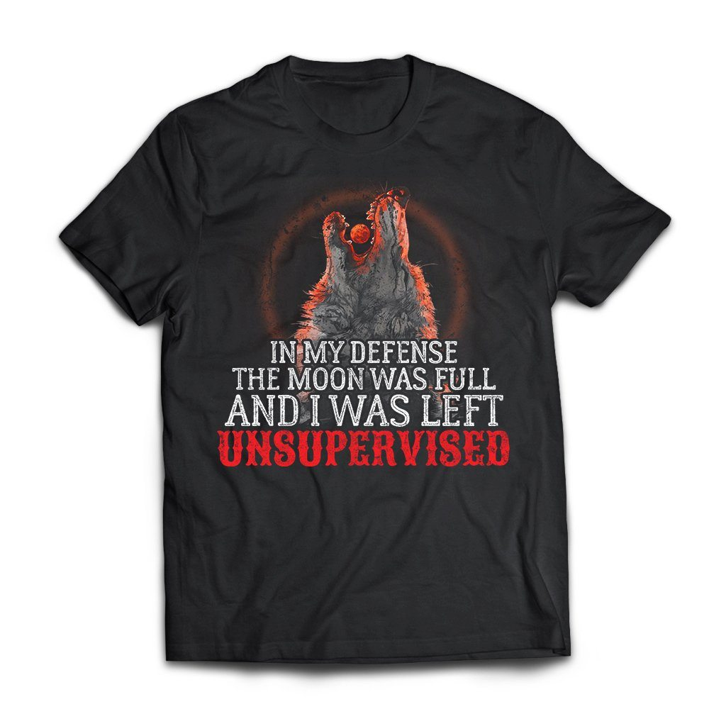 Viking, Norse, Gym t-shirt & apparel, My defense, Unsupervised, FrontApparel[Heathen By Nature authentic Viking products]Next Level Premium Short Sleeve T-ShirtBlackX-Small