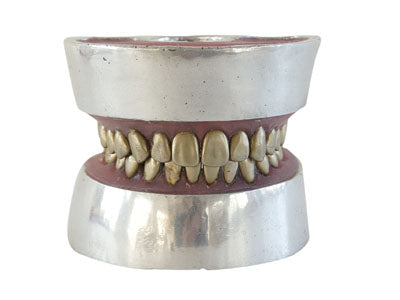 HST-E11 Dental Metal teeth extraction model