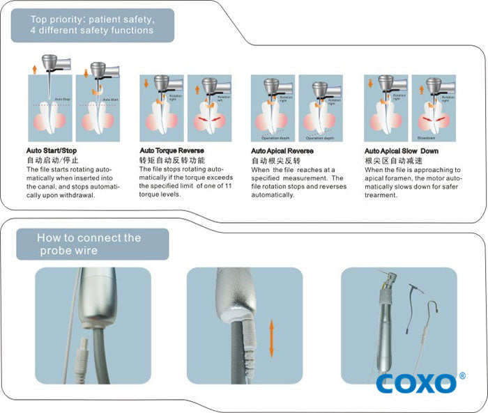 Root Canal Treatment Endodontic Motor - COXO C-Smart-3