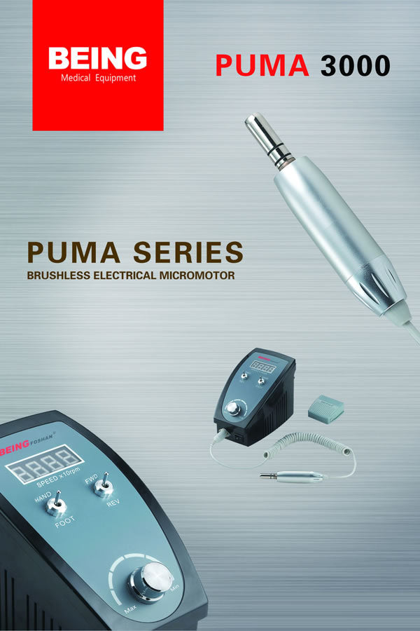 Brushless Electric Motor - Being Puma-3000
