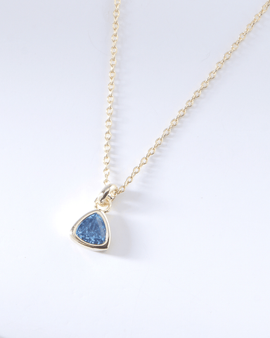 Swarovski Birthstone Necklace - December