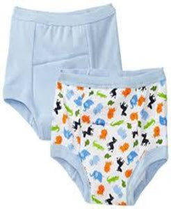 Boys Pair of Training Underwear